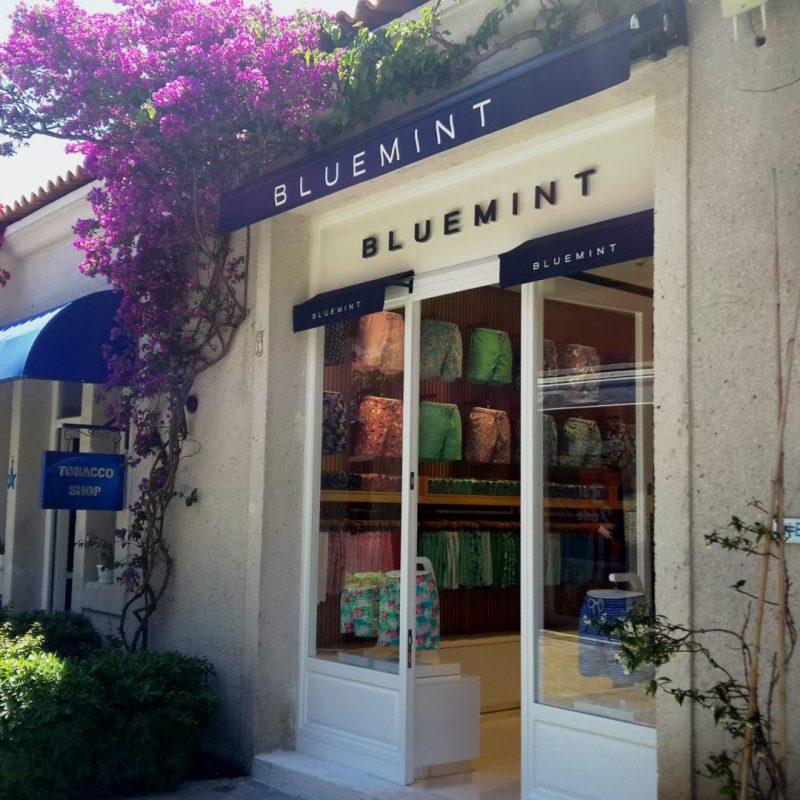 bluemint-cesme
